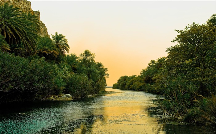 river and palm trees-Beautiful river landscape photography Views:5307 Date:2/14/2012 11:46:01 PM