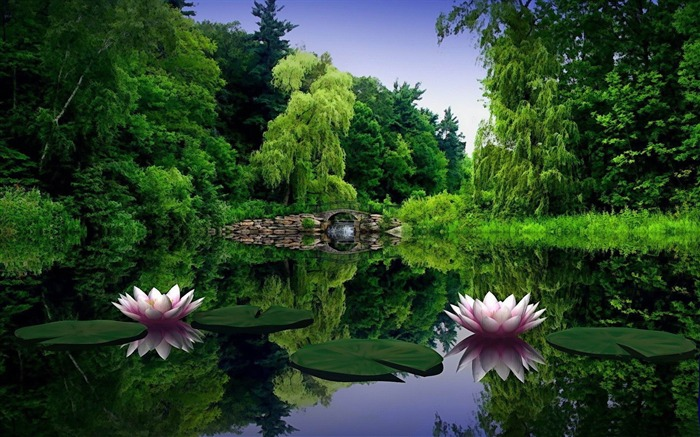 water lilies-PS creative theme design pictures Views:4220
