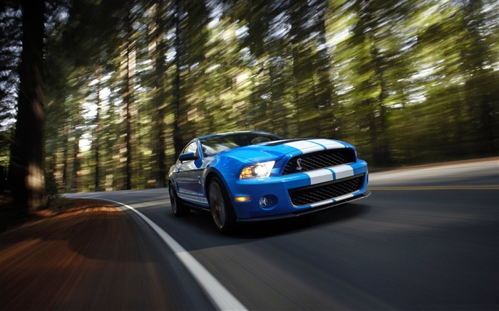 Ford Shelby GT500-Cool Cars Desktop Wallpaper Selection Views:7825