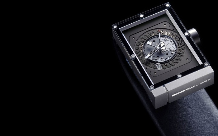 RICHARD MILLE-The world famous brands watches wallpaper Views:12218 Date:3/7/2012 1:57:26 PM