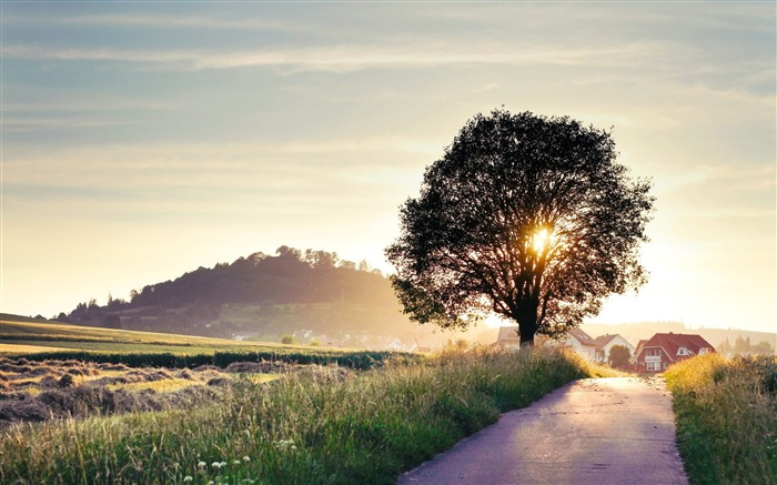 Want to travel with you-beautiful natural landscape wallpaper Views:22700