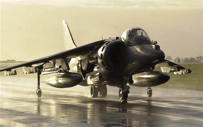 RAF Harrier Aircraft-Military aircraft wallpaper Views:9860