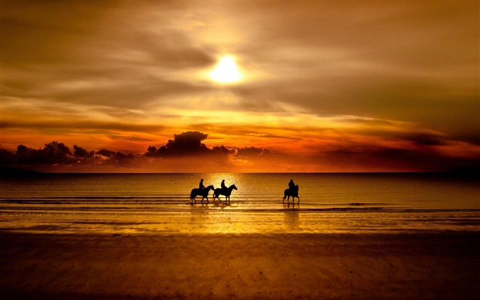 horses sunset-Nature Scenery Wallpaper Views:28319 Date:4/27/2012 7:18:42 PM