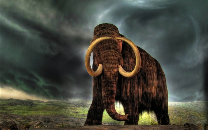 mammoth-Wild Animal HD Wallpapers Views:31919
