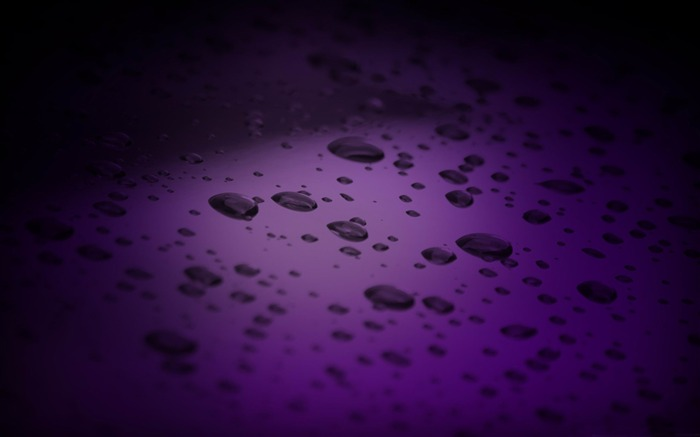 purple drops-Macro photography wallpaper Views:6083 Date:4/19/2012 11:29:27 PM
