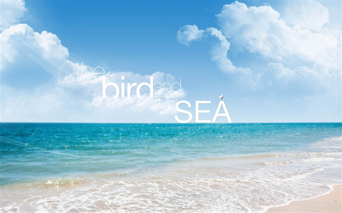 the bird and sea-Creative Design Wallpapers Views:5840