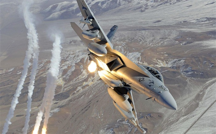 EA 18G Growler Fighter-Military aircraft HD wallpaper Views:9012