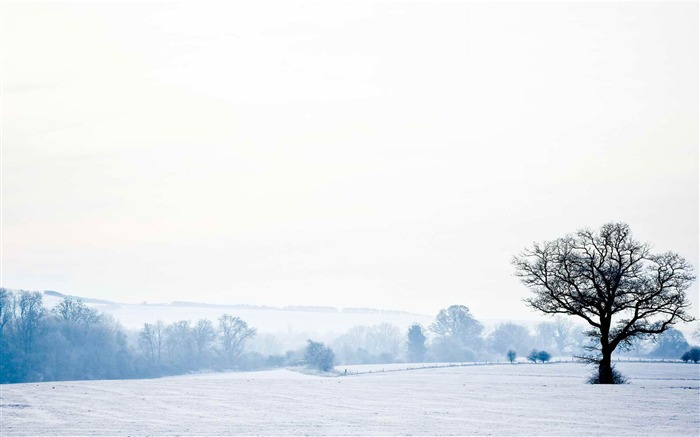 English countryside-Landscape photography wallpaper Views:7134