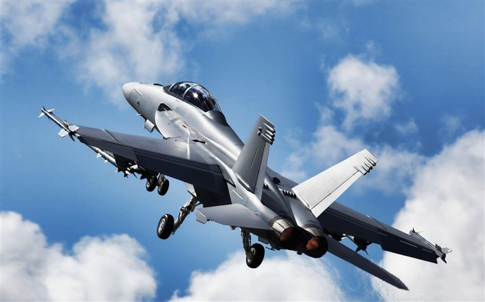 F18 Super Hornet Aircraft-Military aircraft HD wallpaper Views:17234