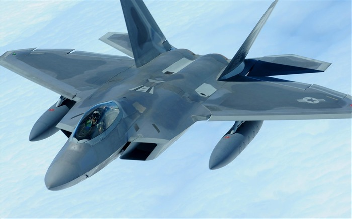 F 22 Raptor-Military aircraft wallpaper Views:10853