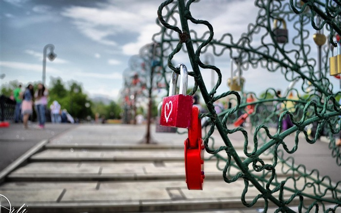 Love Locks-Artistic creation design wallpaper Views:5421 Date:5/6/2012 3:40:25 PM