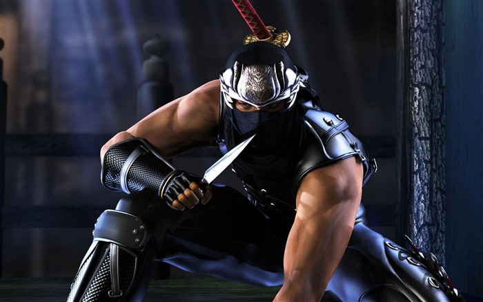 NINJA GAIDEN 3 Game HD Wallpaper Views:18523