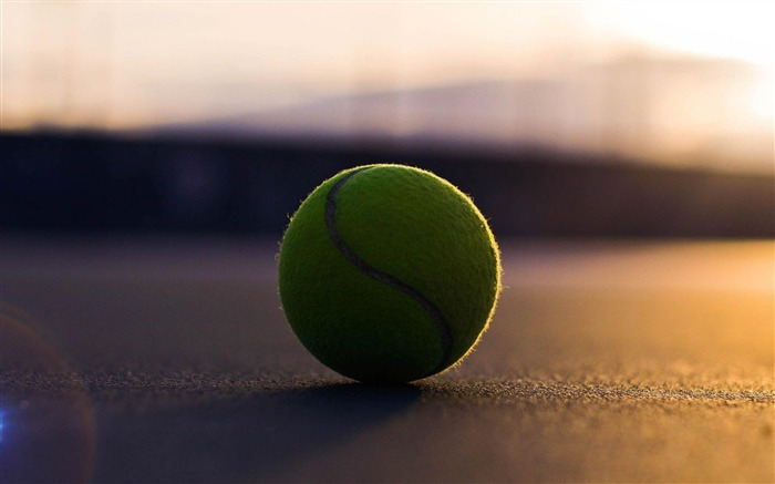 Tennis Ball-Outdoor sports wallpaper Views:19548 Date:5/26/2012 9:08:31 PM