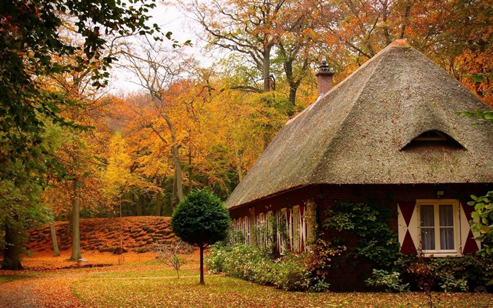 Nature Wallpaper For Home cosy home autumn house Nature