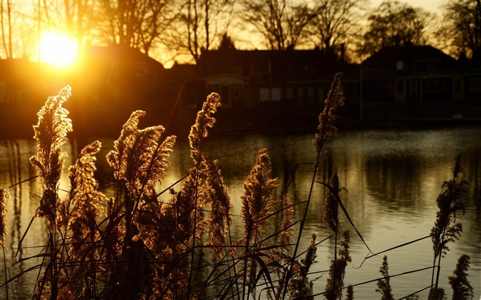 sunset hengelo-Netherlands Landscape Wallpaper Views:6615 Date:5/21/2012 10:25:58 PM