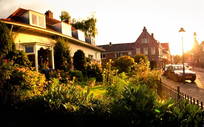 sunset in tuindorp hengelo-Netherlands Landscape Wallpaper Views:6185 Date:5/21/2012 10:27:02 PM