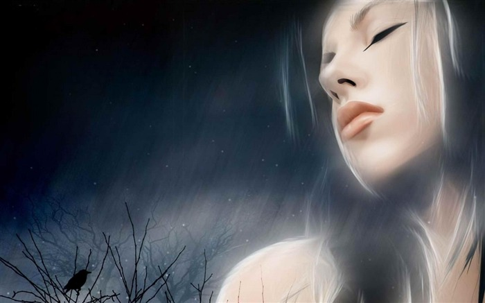 winter night-Artistic creation design wallpaper Views:5479 Date:5/6/2012 3:37:59 PM