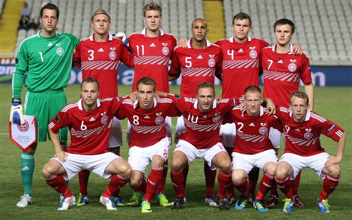 Denmark soccer team-Euro 2012 wallpaper Views:9452