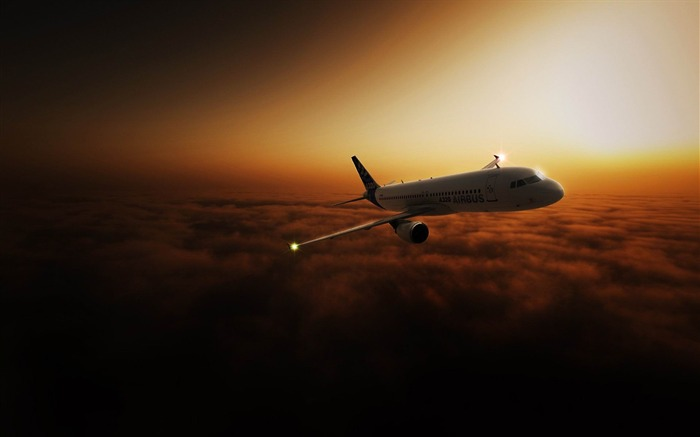 airliner in the sky-Aviation aircraft wallpaper Views:9731