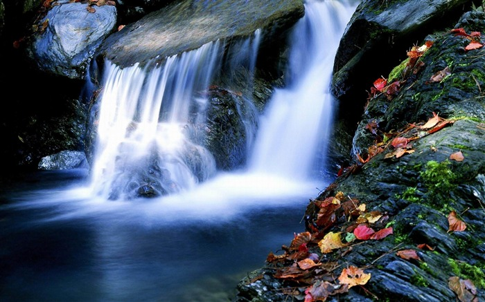 Waterfall Maple-Nature rivers Landscape Wallpaper Views:9847