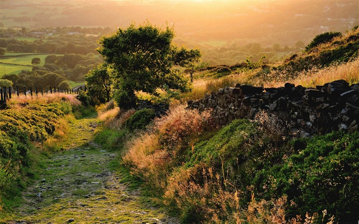 old trail-Summer landscape wallpaper Views:6728
