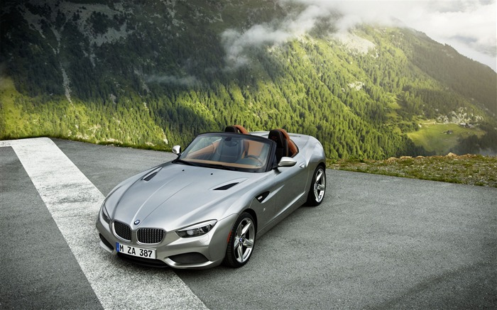 BMW Zagato Roadster Auto HD Wallpaper Views:6941