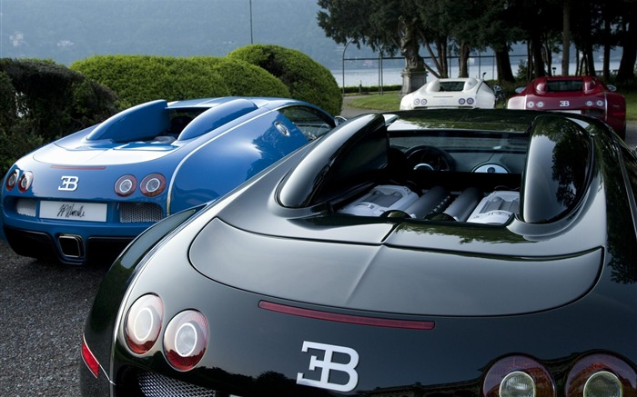 Bugatti-Cars desktop wallpaper Views:6969