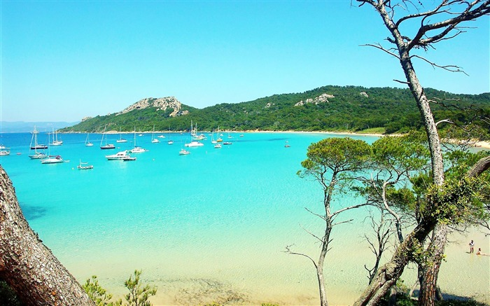France Porquerolles-Nature Wallpapers Views:17750