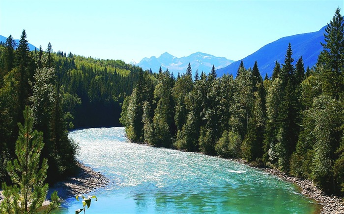 Fraser River Mount Robson Provincial Park-Nature Wallpapers Views:8372