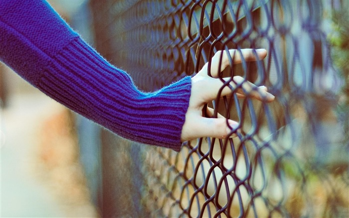 Hand Fence-High Quality wallpaper Views:4725