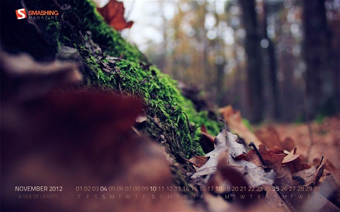 A Sea Of Leaves-November 2012 calendar wallpaper Views:4641