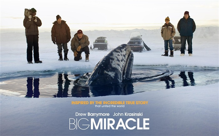 Big Miracle 2012 Movie HD Desktop Wallpapers Views:7517
