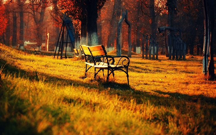 Golden Park Bench-Autumn landscape widescreen wallpaper Views:21549 Date:10/16/2012 11:46:33 AM