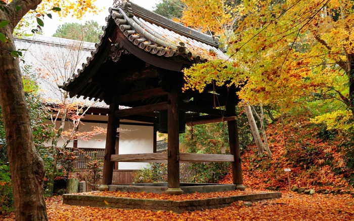 Red leaves in the kiosk-Enkoji Temple Autumn wallpapers Views:4368