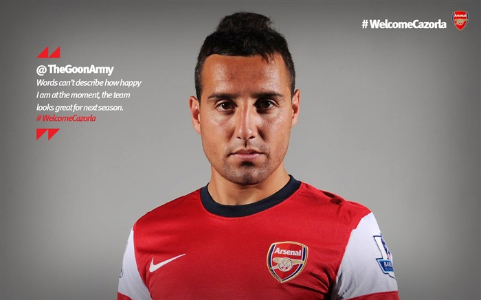 Santi Cazorla-Arsenal 2012-13 season wallpaper 01 Views:8727
