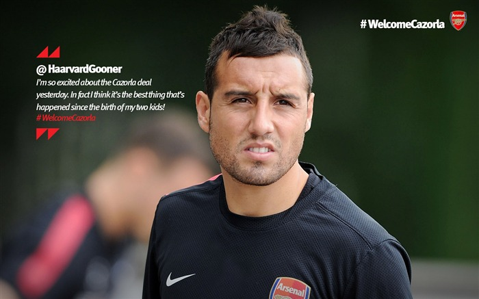 Santi Cazorla-Arsenal 2012-13 season wallpaper Views:8511