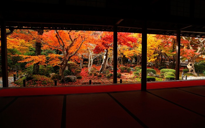 best angle of the autumn landscape-Enkoji Temple Autumn wallpapers Views:15593
