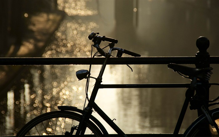 bicycle bokeh-Autumn Nature Wallpapers Views:10299