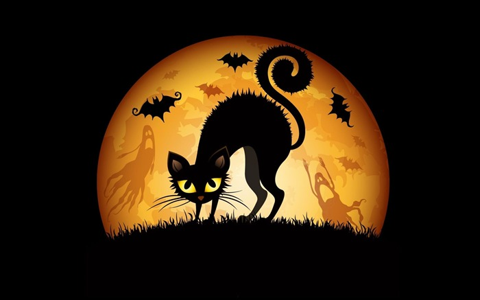 cats bats-2012 Happy Halloween theme Wallpapers Views:9157
