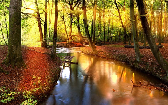 Bon Vendredi Impressive-autumn_landscape_Wallpaper_medium