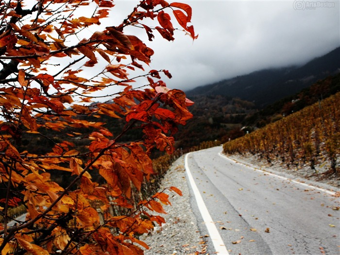 mountain fall-Autumn landscape widescreen wallpaper Views:5589 Date:10/16/2012 11:57:17 AM