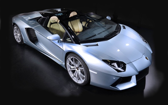 2014 Lamborghini Aventador LP700-4 Roadster cars HD Wallpapers Views:13837