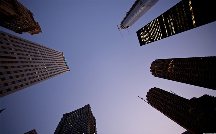 Look to the Chicago skyscraper-Life photography Wallpapers Views:3394