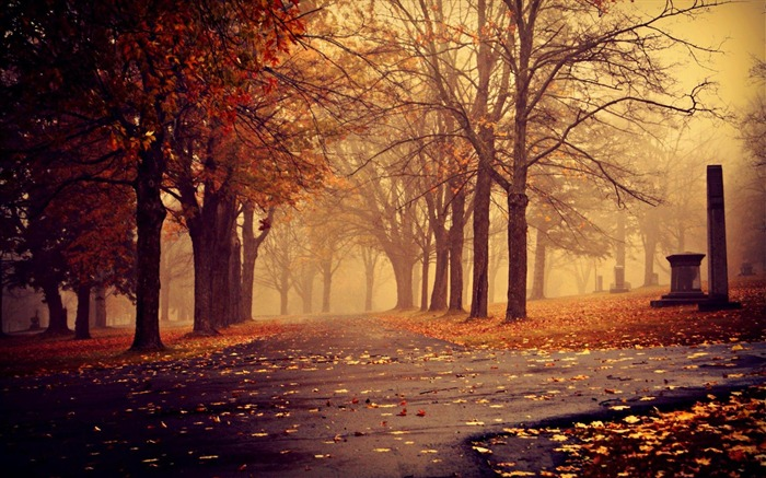 Morning Park Autumn-nature scenery wallpapers Views:5670