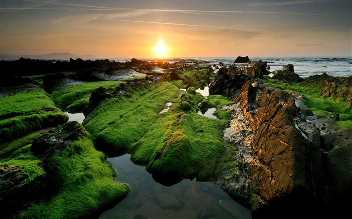 Rocky Shore-2012 landscape Selected Wallpaper Views:3991