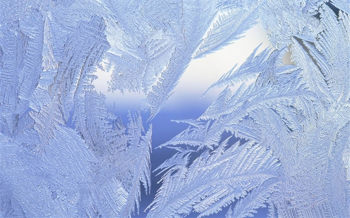 frosted window close up-Winter natural landscape wallpaper Views:26881
