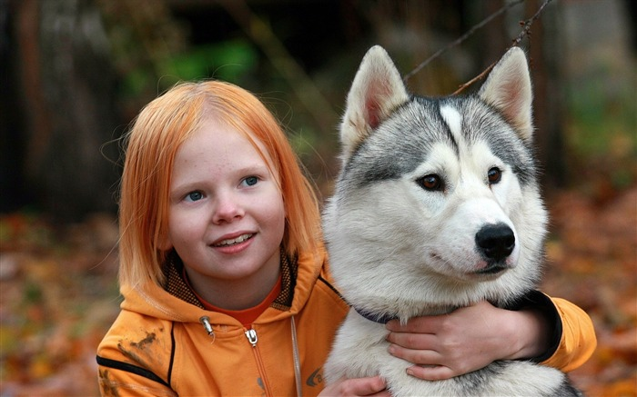 red haired girl with her siberian husky-2012 animal Featured Wallpaper Views:5984