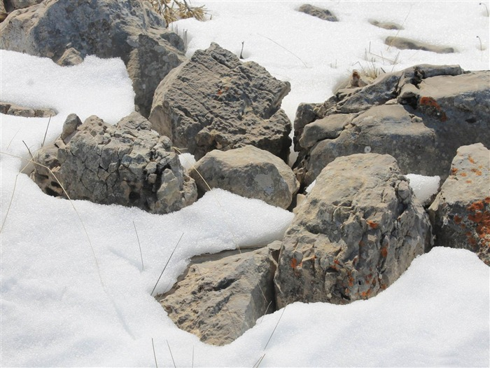 rocks on the snow-Winter natural landscape wallpaper Views:5000