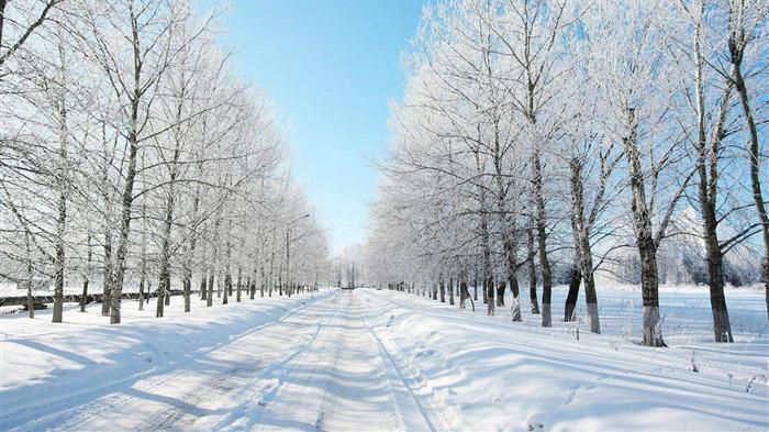 snowy road-winter scenery HD Wallpaper
