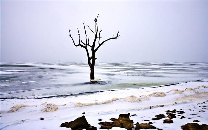 Cold Winter Snow Scenes Desktop Wallpapers Album List Page2 10wallpaper Com